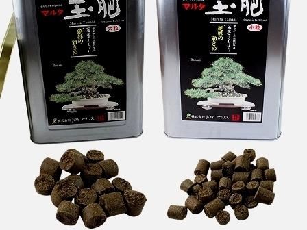 abono solido para bonsai