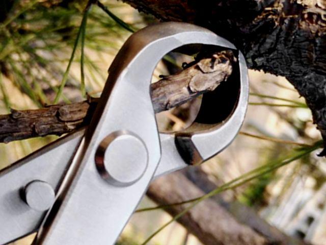 vaciadora esferica de acero inoxidable para bonsai